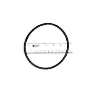 PINNACLE PUMP / INTELLIFLO LID O-RING